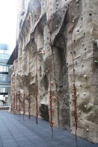 Rock Wall at the CRWC!