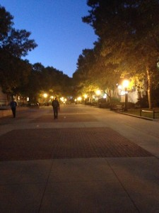 T. Anne Cleary Walkway at Night!